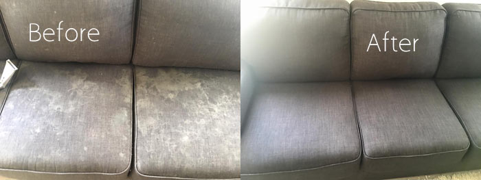 Couch Cleaning Langley