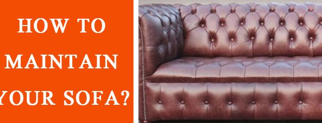 How to maintain your sofa?